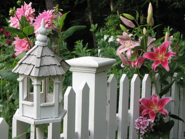 trang trí tường rào