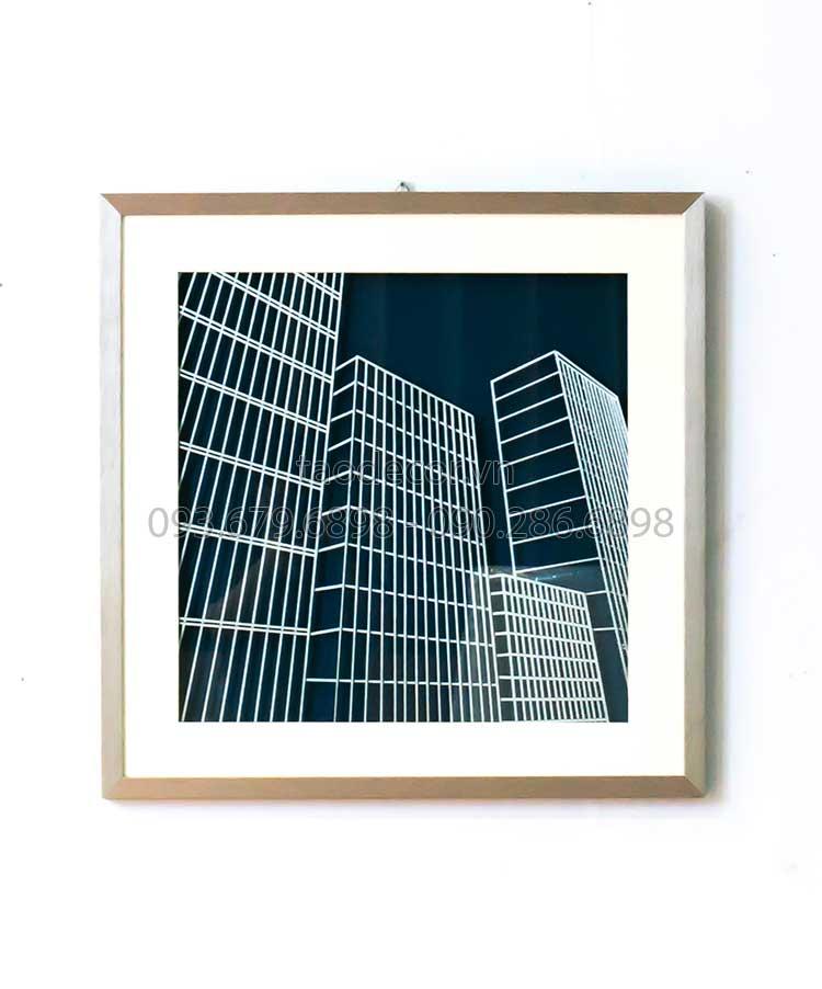 tranh-treo-tuong-nha-cao-oc-3D-70x70x5--T3D0008-(6)