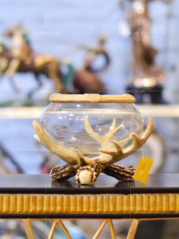 bể cá nhỏ sừng hươu - taodecor.vn trang trí nhà và quà tặng 1