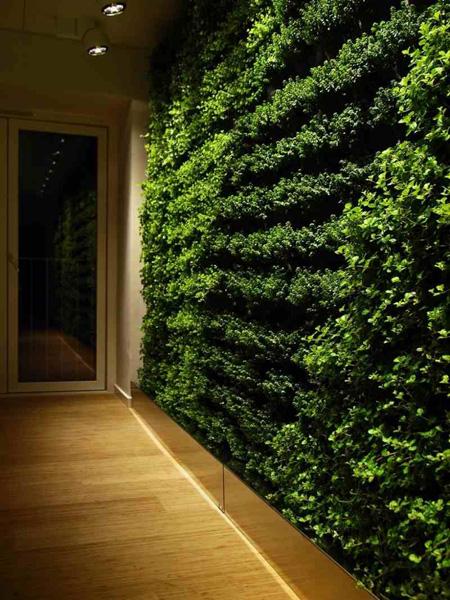 Một bức tường bằng cây cỏ