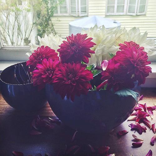 Bạn đừng e ngại những cánh hoa rụng, chúng sẽ khiến cho bình hoa có cảm giác tự nhiên