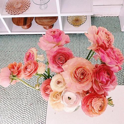 Cùng một loại hoa nhưng các sắc độ khác nhau của màu hồng khiến bình hoa trở nên dịu dàng và đẹp mắt hơn.