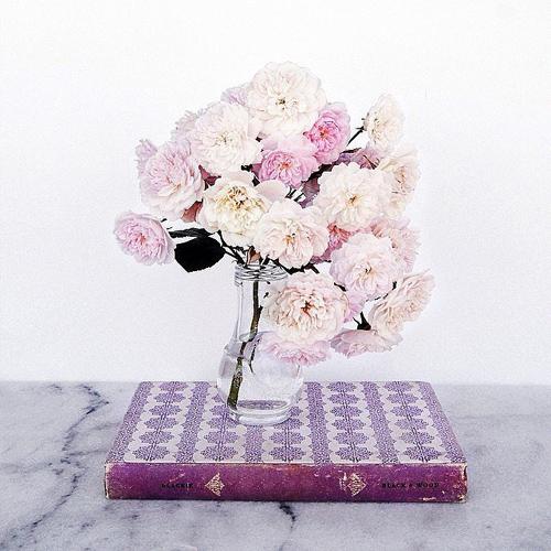 Bạn có thể đặt bình hoa lên một cuốn sách yêu thích hoặc sách có màu đồng điệu với hoa