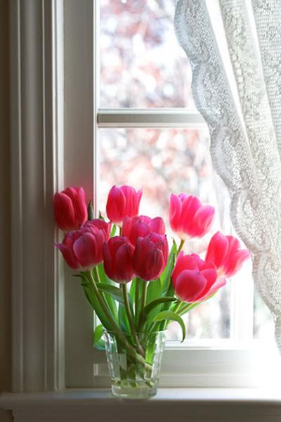 Lọ hoa kết hợp với rèm cửa mang phong cách sang trọng