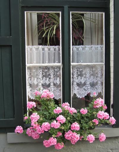 Rèm cừa ren tạo điểm nhấn cho cửa sổ
